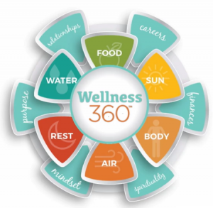 healthy what does healthy mean the wheel of life