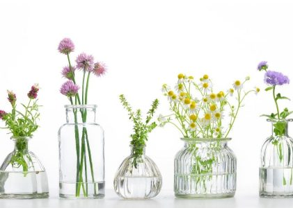 The History Of Aromatherapy, Essential Oils