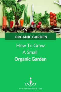 Small Organic Gardening - Top Tips How To Grow A Small Organic Garden outdoor or indoor by Permaculture and Sustainability Consultant Elizabeth Waddington- The World of Health