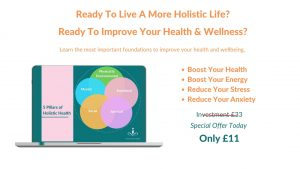 5 Pillars Of Holistic Health Course - The World of Health